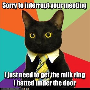 Sorry to interrupt your meeting