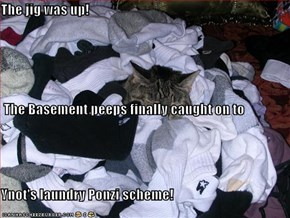 The jig was up!   The Basement peeps finally caught on to Ynot's laundry Ponzi scheme!