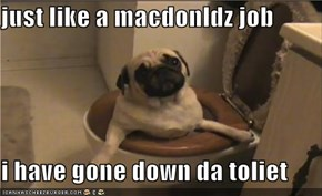 just like a macdonldz job  i have gone down da toliet
