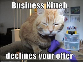Business Kitteh  declines your offer