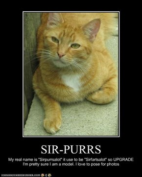SIR-PURRS