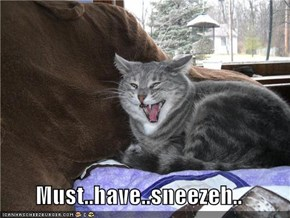 Must..have..sneezeh..