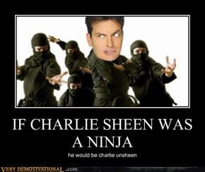 IF CHARLIE SHEEN WAS A NINJA