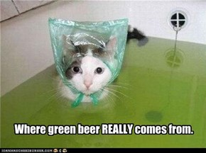 Where green beer REALLY comes from.