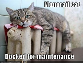 Monorail cat  Docked for maintenance