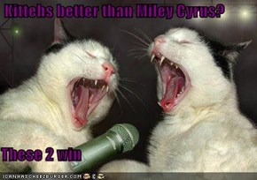 Kittehs better than Miley Cyrus?  These 2 win