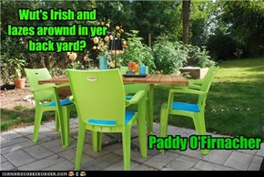 Wut's Irish and lazes arownd in yer back yard?