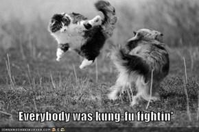 Everybody was kung-fu fightin'