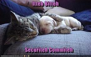 Itteh Bitteh                         Securiteh Commiteh