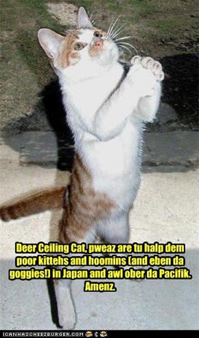 Deer Ceiling Cat, pweaz are tu halp dem poor kittehs and hoomins (and eben da goggies!) in Japan and awl ober da Pacifik. Amenz.