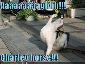 Aaaaaaaaaghhh!!!  Charley horse!!!