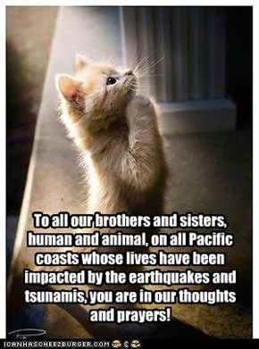 To all our brothers and sisters, human and animal, on all Pacific coasts whose lives have been impacted by the earthquakes and tsunamis, you are in our thoughts and prayers!