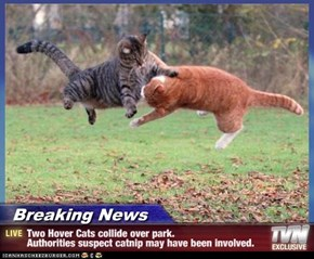 Breaking News - Two Hover Cats collide over park.                Authorities suspect catnip may have been involved.