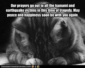 Our prayers go out to all the tsunami and earthquake victims in this time of tragedy. May peace and happiness soon be with you again.