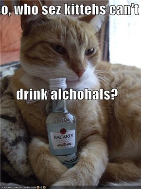 so, who sez kittehs can't drink alchohals?