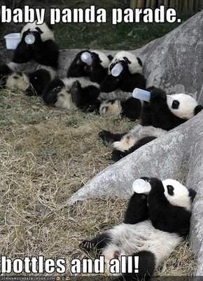 baby panda parade.  bottles and all!