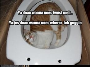 Ya doan wanna noes,twust meh...  Ya jus doan wanna noes wherez  teh goggie