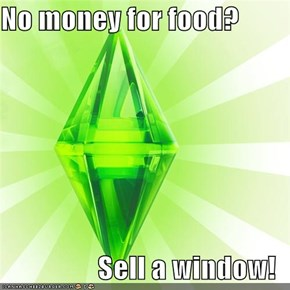 No money for food?  Sell a window!