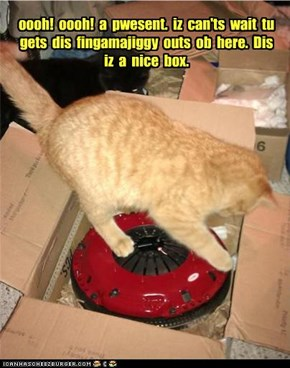 oooh!  oooh!  a  pwesent.  iz  can'ts  wait  tu gets  dis  fingamajiggy  outs  ob  here.  Dis iz  a  nice  box.