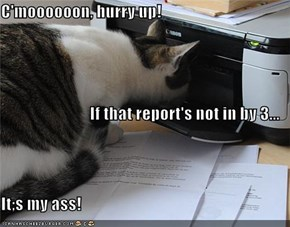 C'moooooon, hurry up! If that report's not in by 3... It;s my ass!