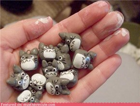 A Handful of Tiny Totoros