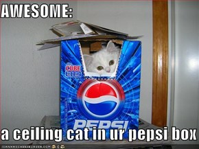 AWESOME:  a ceiling cat in ur pepsi box
