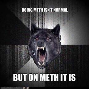 DOING METH ISN'T NORMAL