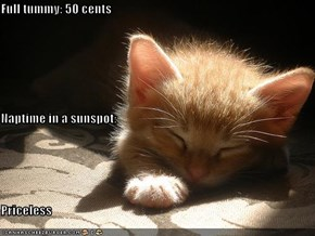 Full tummy: 50 cents Naptime in a sunspot: Priceless