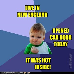 LIVE IN  NEW ENGLAND