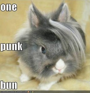 one  punk bun
