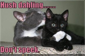 Hush dahling........  Don't speek.