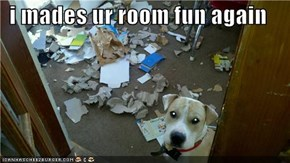 i mades ur room fun again