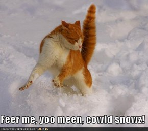Feer me, yoo meen, cowld snowz!