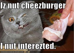 Iz nut cheezburger  I nut interezted.