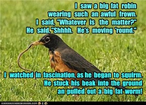 "I   saw  a  big  fat   robin    wearing   such   an  awful   frown.          I   said,  ""Whatever   is    the   matter?""                                                He   said, ""Shhhh.    He's   moving  'round."""
