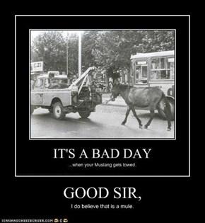 GOOD SIR,