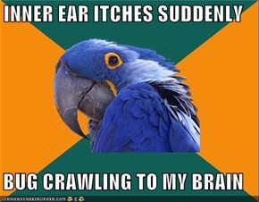 INNER EAR ITCHES SUDDENLY  BUG CRAWLING TO MY BRAIN