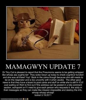 MAMAGWYN UPDATE 7