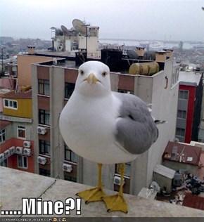 .....Mine?!