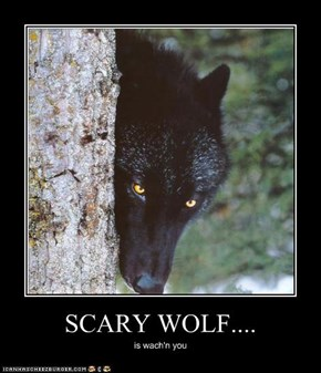 SCARY WOLF....