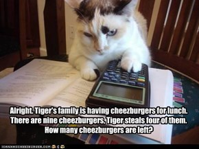 Alright. Tiger's family is having cheezburgers for lunch. There are nine cheezburgers, Tiger steals four of them. How many cheezburgers are left?
