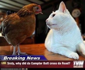 Breaking News - Srsly, why did da Cumpter Butt cross da Road?