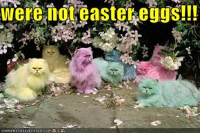 were not easter eggs!!!