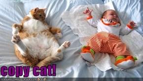 copy cat!