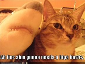 Ah finx ahm gunna needs a biga bowts.