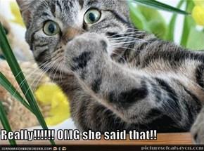 Really!!!!!! OMG she said that!!