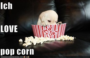 Ich LOVE pop corn