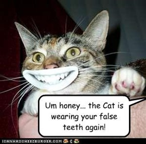 Um honey... the Cat is wearing your false teeth again!