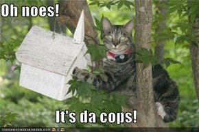 Oh noes!  It's da cops!