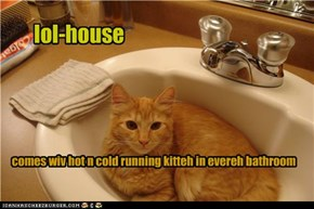 hot and cold running kitteh